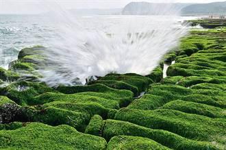 北海岸綠石槽至5月每日都有免費導覽 請遵守不踩踏公約