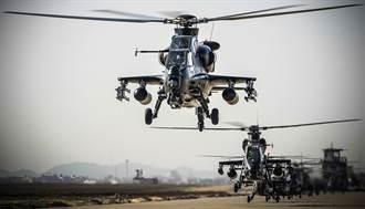 面對台灣 陸大建軍用直升機場進展神速