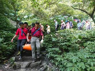 宜蘭抹茶山傳意外 45歲男山客突倒地無呼吸心跳