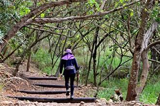 環保公園登山步道進化 環形縱走賞大肚之美
