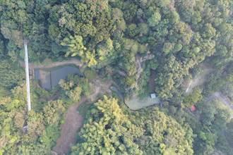 龍崎虎形山公園農塘整治 可望變身生態池塘