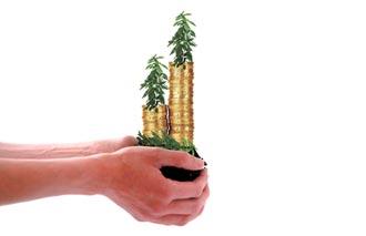 專家傳真-何謂漂綠?該如何避開漂綠基金?