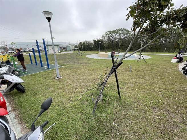 清水區菁埔里社區公園相關設施不足,將增設相關設施提升休憩品質。(陳淑娥攝)