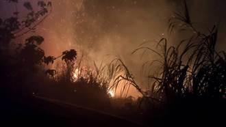 阿里山大火延燒36小時未滅 今明櫻花季路斷賞花全泡湯