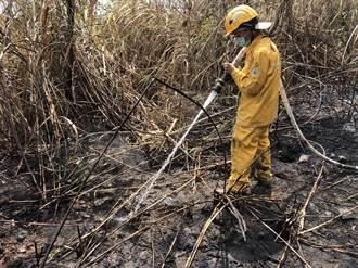 陸空合力搶救森林火災 阿里山公路20日下午3點通車