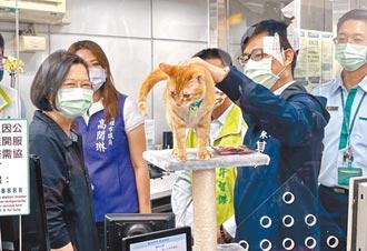 貓站長蜜柑邀訪 小英開心來探班