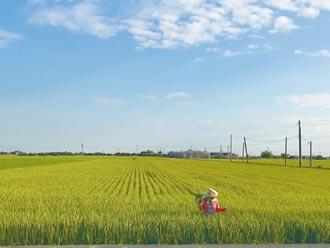 肥料實名制上路一年 減肥效果有限
