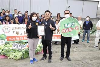 響應支持台灣農產 企業認購50噸雲林高麗菜