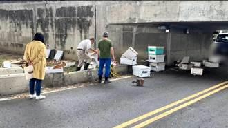 搬運蜂巢貨車擦撞涵洞 現場群蜂飛舞
