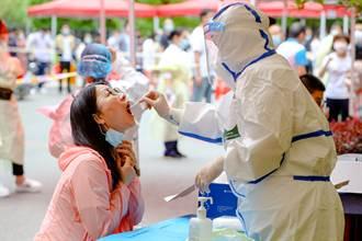 無症狀感染超過8成 《刺胳針》:武漢70萬新冠感染者未檢出