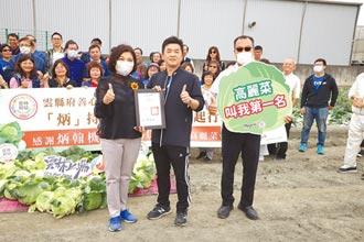 支持雲林農民 企業認購50噸高麗菜
