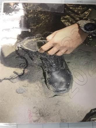 【F5E擦撞】最新發現!徹夜搜尋失蹤上尉潘穎諄  軍方:找到飛行員鞋子