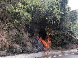 不滿獼猴群偷吃農作物 老農夫旗尾山縱火遭逮