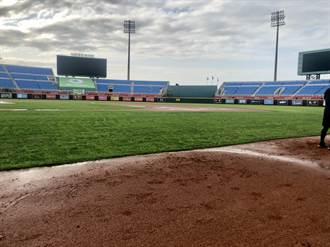 中職》桃園獅猿戰因雨延賽 5月26日進行補賽