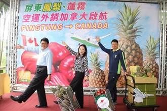 屏東鳳梨、蓮霧空運外銷加拿大正式啟動
