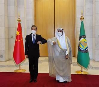 沙烏地王儲會見王毅:堅定支持中方在涉疆等問題上立場