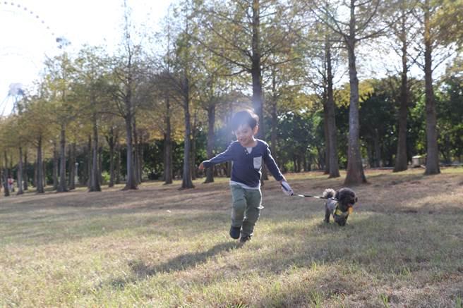 熱氣球現場還有寵物區,以及寵物日限定趣味競賽活動,快帶著你家毛孩一起參加。(陳淑娥攝)