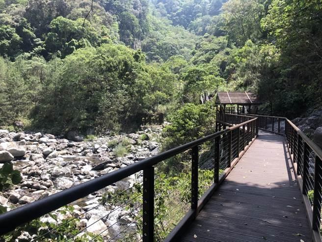 十文溪潔淨清澈水質,營造螢火蟲最佳棲息地。(台中市觀旅局提供/王文吉台中傳真)