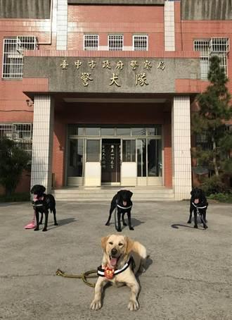 中市警犬隊慶成軍3年 換換衫來抽獎