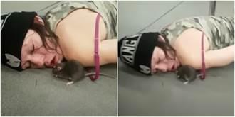 女醉倒地鐵慘遭老鼠喇舌撿屍 19秒片萬人作嘔