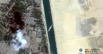 長榮20艘牲畜船堵塞運河恐斷水斷糧死亡 國際動物組織:像生物定時炸彈!