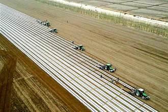 北斗衛星引導 新疆百萬畝棉花田開始播種