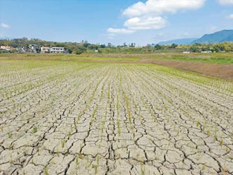大撒幣還缺水 蘇揆:無前瞻早限水