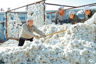 抵制新疆棉 大陸專家憂脫鉤供應鏈