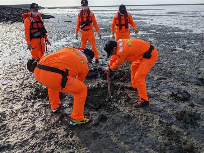 海洋保育署第五站人員及海巡人員就地掩埋。(海巡署中部分署第四岸巡隊提供)