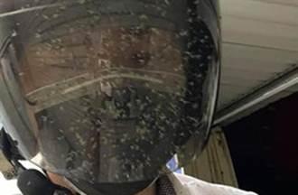 「蚊子死屍」蓋滿安全帽脖子白襯衫 騎士驚嚇:恐怖攻擊