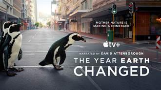 Apple TV+迎世界地球日首播《這一年,地球變得不一樣》紀錄片