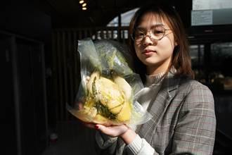 桂花林中的養雞場 台青在南京夢想啟航