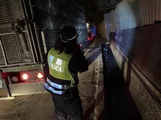 貨運司機累了靠邊睡 鵝群趁隙逃脫壓馬路