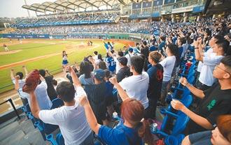 體育賽事 開放上萬觀眾進場