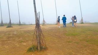 基隆潮境公園 飛天掃帚變竹竿