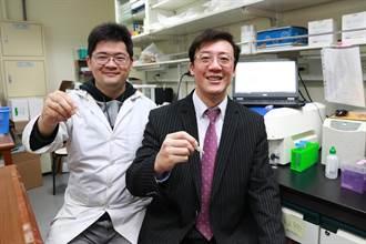 納豆萃取物抗黑色素癌 興大研究登國際期刊