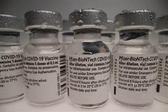 輝瑞/BNT疫苗到手 我獲COVAX分配50萬劑