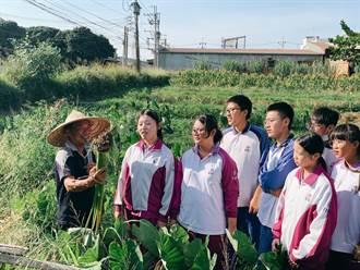 投入地方農業創生 修平獲大學社會責任首獎