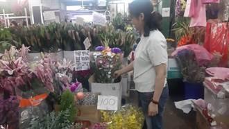 清明祭祖供需平穩 香水百合、菊花價格變動不大