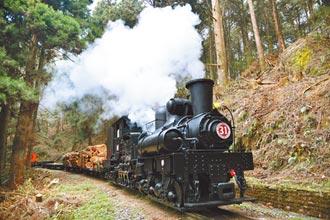 阿里山百岁蒸汽火车出动