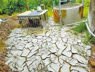 曾文溪乾旱 農民灌溉沒水抽