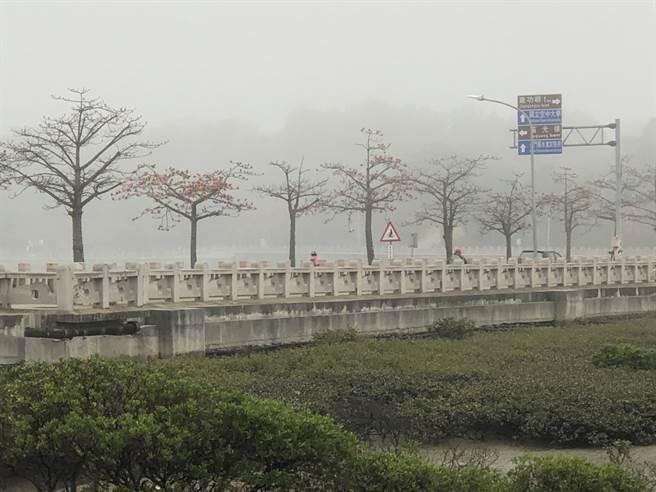 全島各地濃霧深鎖,能見度僅約200公尺左右。(李金生攝)