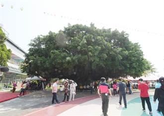 全國最美校樹在三條國小 80歲生日快樂榕薈館及校史室啟用