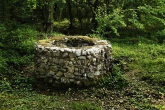 修民宅發現戰國古井 井內全用木頭建造未腐爛 專家驚呼