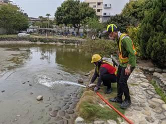 乾涸導致古蹟林宅魚群暴斃 中市環保局緊急送水救命