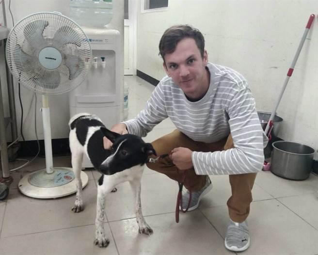 澳洲籍布萊恩長年在高雄工作,日前主動致電新北市八里動物之家要認養「黑白切」米克斯犬。(新北市動保處提供)