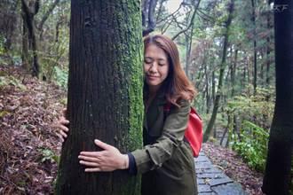 陽明山五感森林療癒 走入世界首座都會寧靜公園