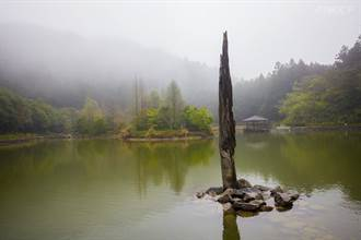 走進雲霧裡賞櫻花 夏日還有鼓與大自然的和鳴表演