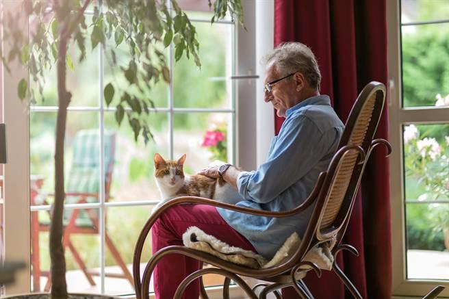 在愛貓的陪伴之下,原本罹患骨癌且因為治療備受煎熬的老翁,健康狀況有了大幅的改善。(示意圖/達志影像)