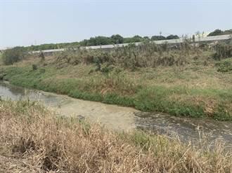柳營龜仔港大排遭偷倒牛糞 市府4月底前完成清淤